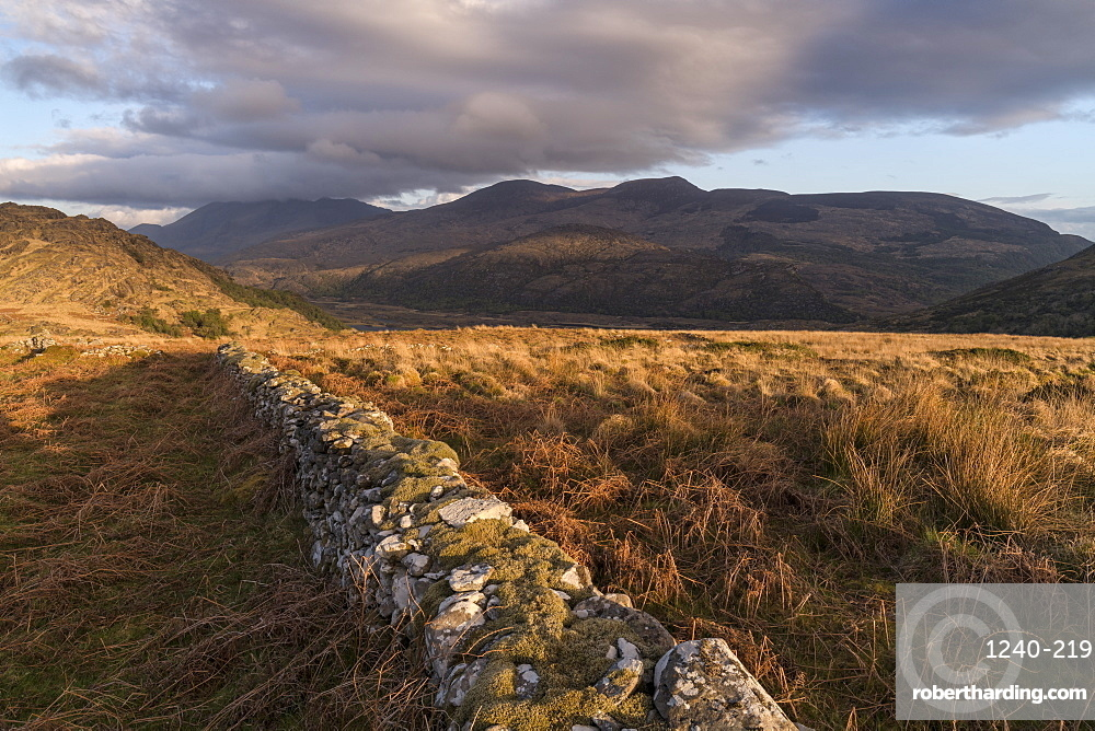 Crinnagh, The Old Kenmare Road, Killarney National Park, County Kerry, Munster, Republic of Ireland, Europe