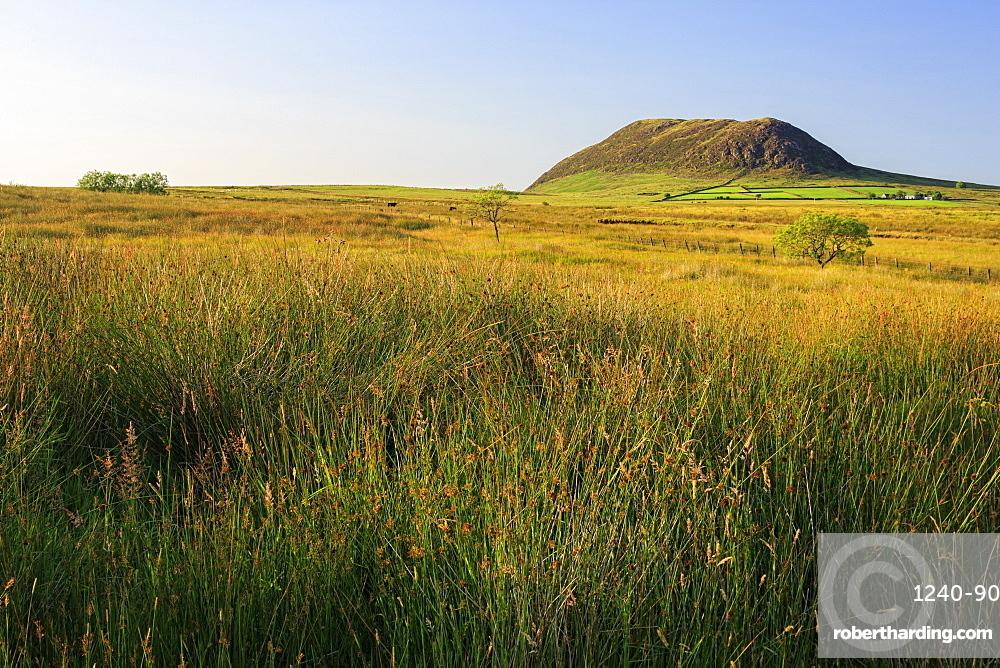 Slemish Mountain, County Antrim, Ulster, Northern Ireland, United Kingdom, Europe