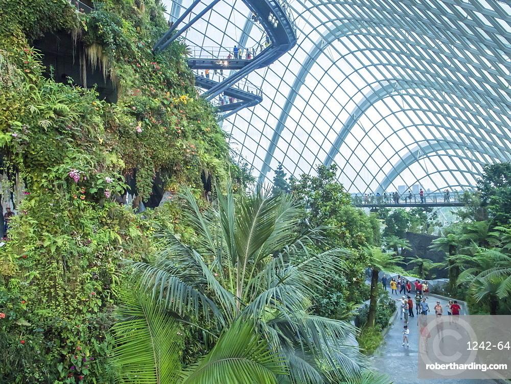 Indoor Rainforest Garden Gardens By Stock Photo