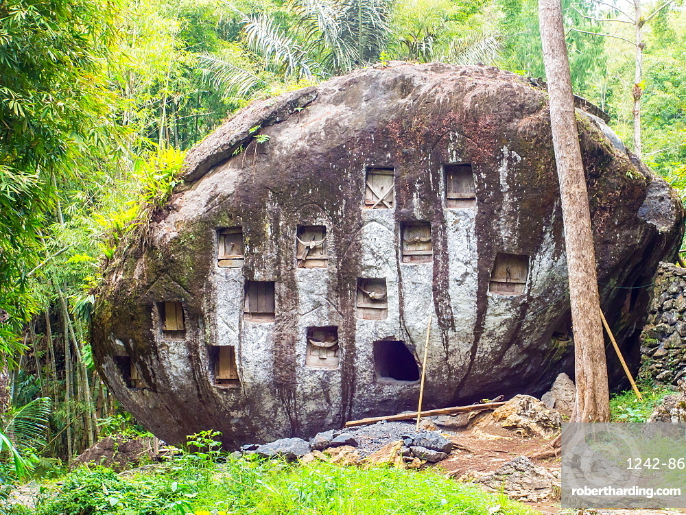 Where there are no cliffs or caves, crypts are carved into boulders, Tana Toraja, Sulawesi, Indonesia, Southeast Asia, Asia