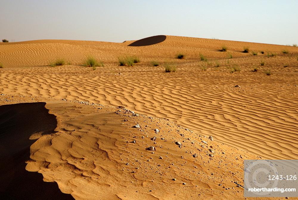 Sand dunes at sunset near Dubai, United Arab Emirates, Middle East