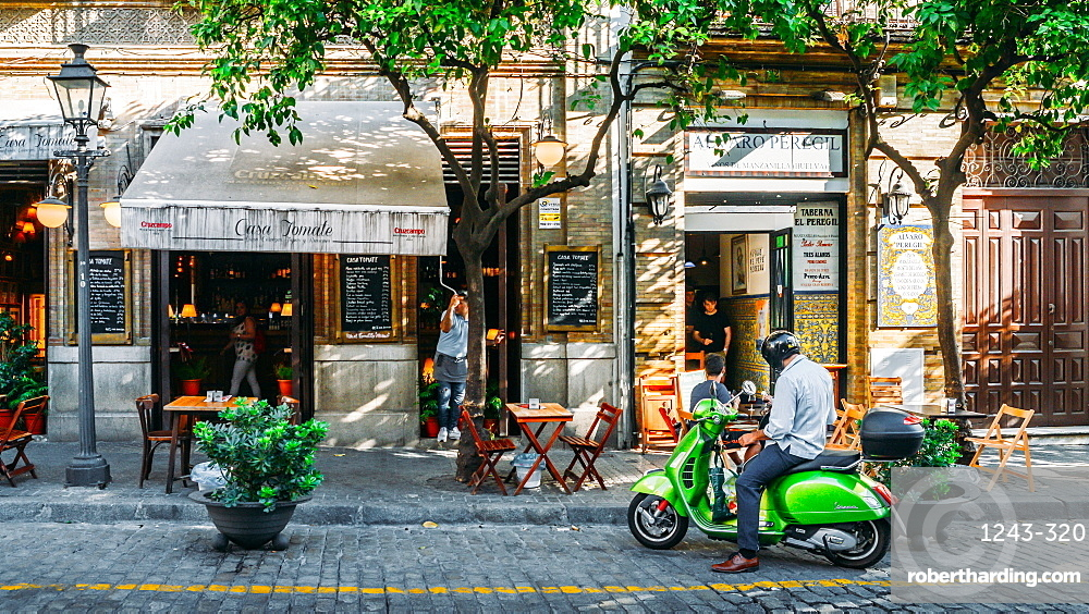 Man on green Vespa on Calle Mateos Gago in the historic centre of Seville, Andalusia, Spain, Europe