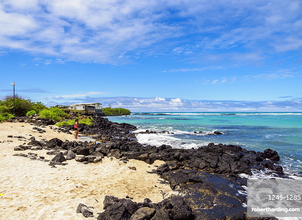 Charles Darwin Station Beach, Playa de la Estacion, Puerto Ayora, Santa Cruz (Indefatigable) Island, Galapagos, UNESCO World Heritage Site, Ecuador, South America