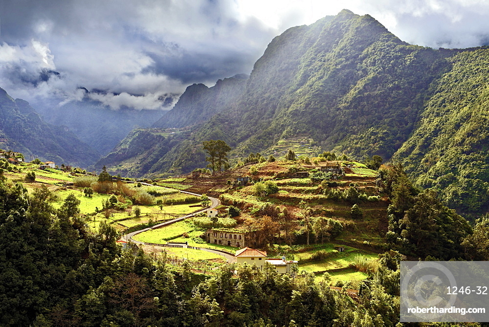 Elevated view of farmland and tree covered hills and mountains near Boaventura, Madeira, Portugal, Atlantic, Europe
