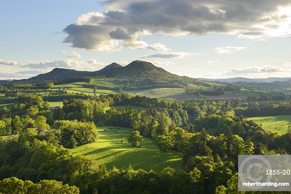 The Eildon Hills in the Scottish Borders, photographed from Scott's View at Bemersyde, Scotland, United Kingdom, Europe
