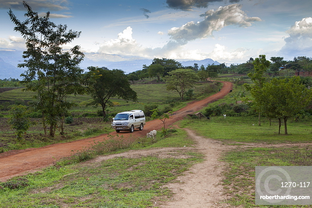 A mini bus drives along a red dusty earth road through rural Uganda, Africa