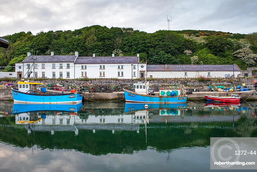 Rathlin Island, County Antrim, Ulster, Northern Ireland, United Kingdom, Europe