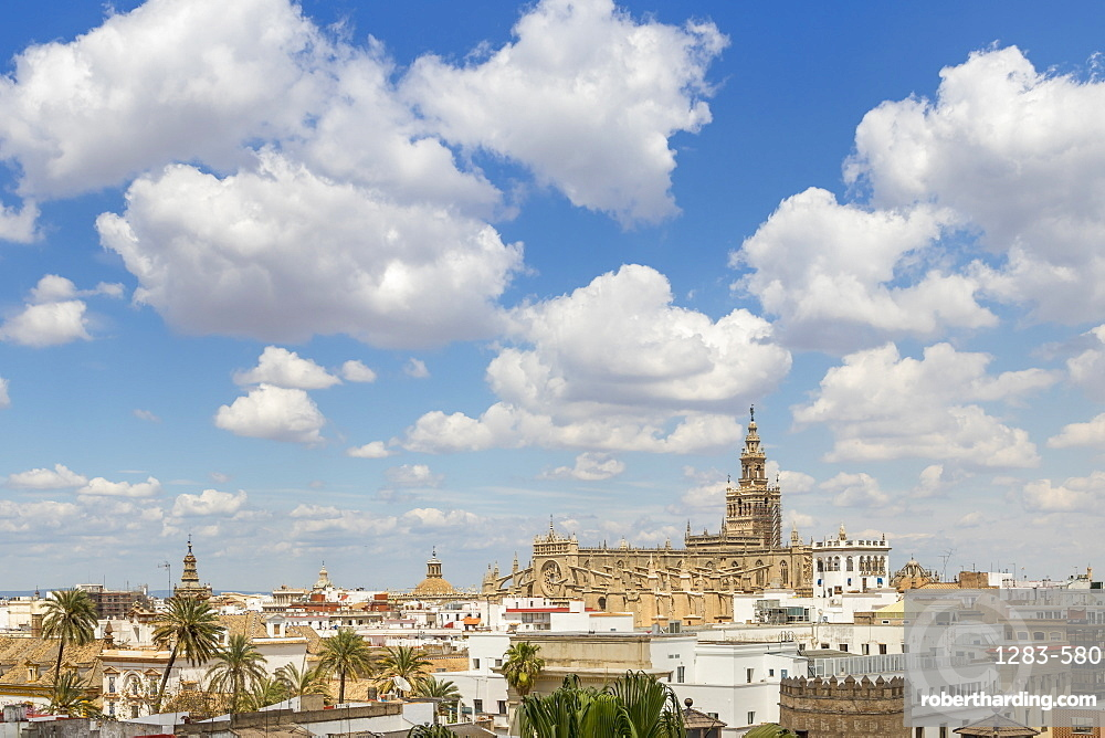 View from the Golden Tower (Torre del Oro) to the Cathedral, Seville, Andalusia, Spain, Europe