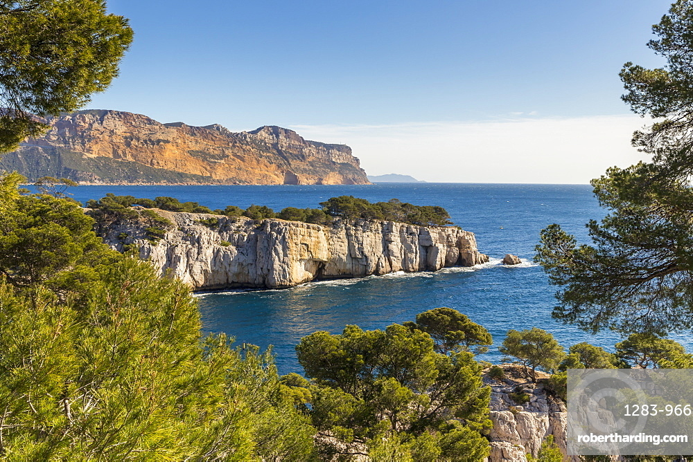 View over the Calanque de Port Pin and Cap Canaille, Calanques National Park, Cassis, France, Europe