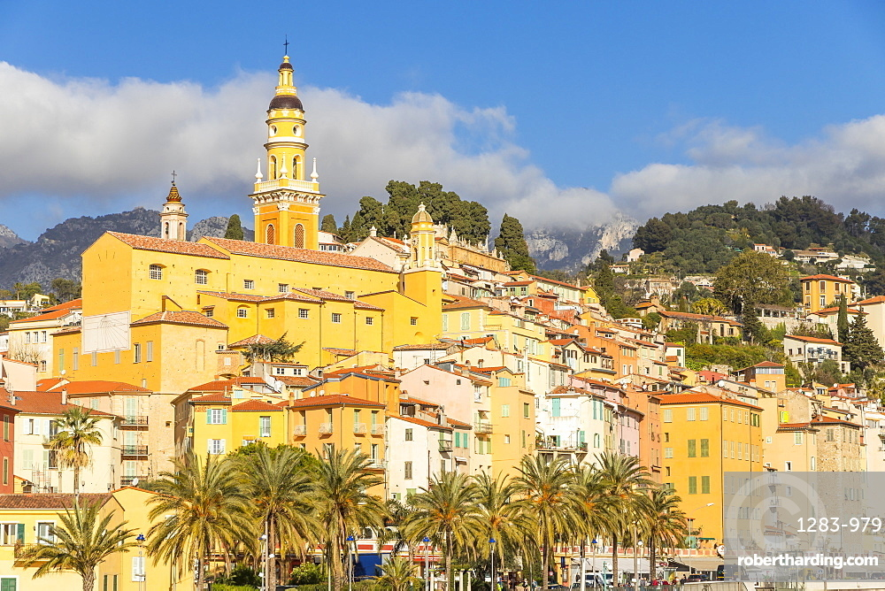 The old town with the Saint-Michel-Archange basilica, Menton, Cote d'Azur, French Riviera, Provence, France, Europe