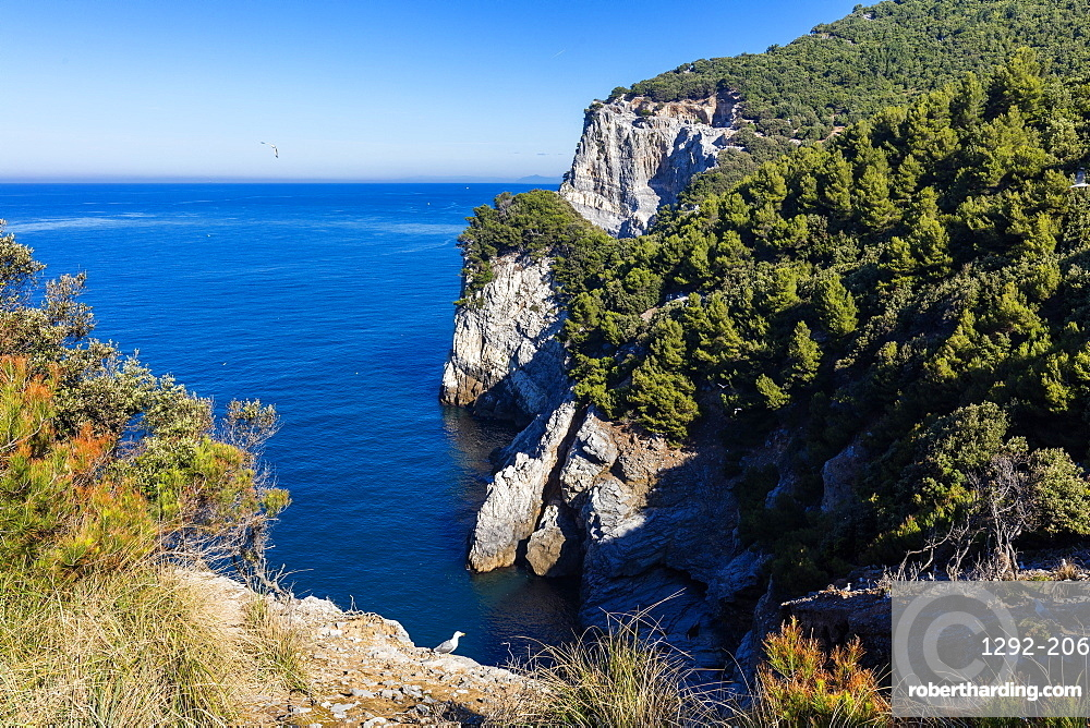 Island of Palmaria, view of the south west coast, Liguria, Italy, Europe