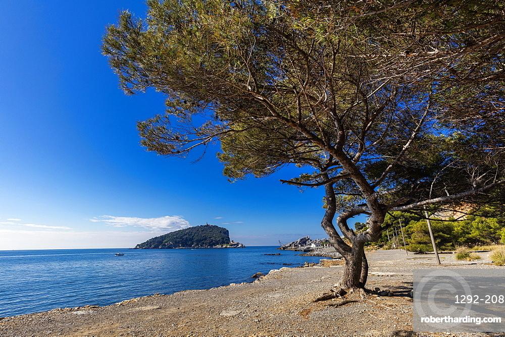 Pozzale, Island of Palmaria, Liguria, Italy, Europe