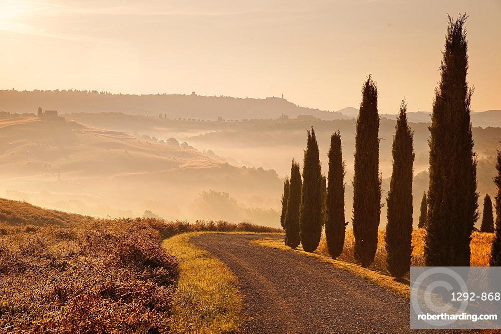 Surroundings, Pienza, Tuscany, Italy, Europe