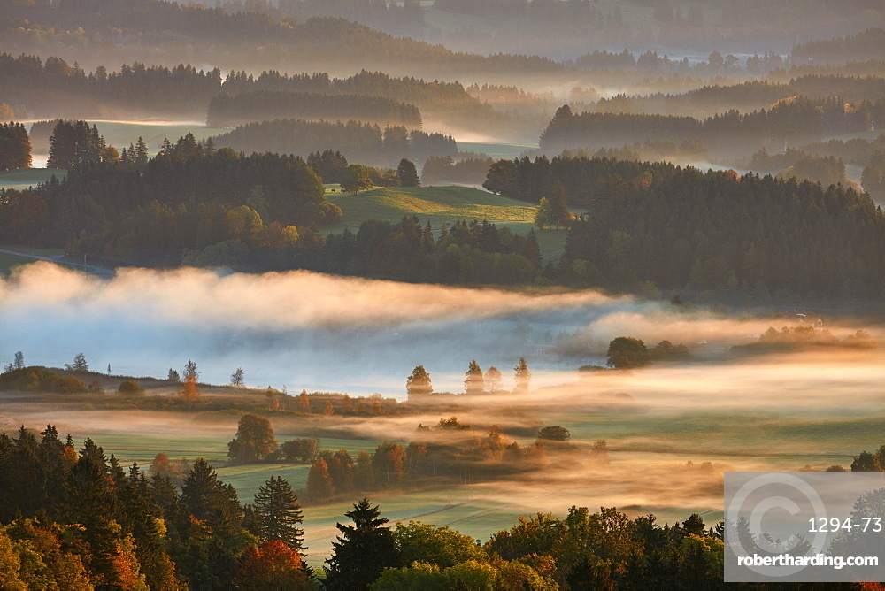 Morning autumn fog above lake Hassloch in the Allgau, seen from Auerbeg hill, Bavaria, Germany, Europe