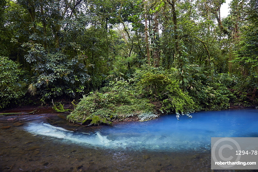 Rio Celeste in the Tenorio Volcano National Park  shows a bright blue colour like no other river due to a chemical reaction, Tenorio, Costa Rica, Central America