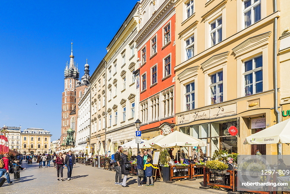 The main square, Rynek Glowny, in the medieval old town, UNESCO World Heritage Site, Krakow, Poland, Europe