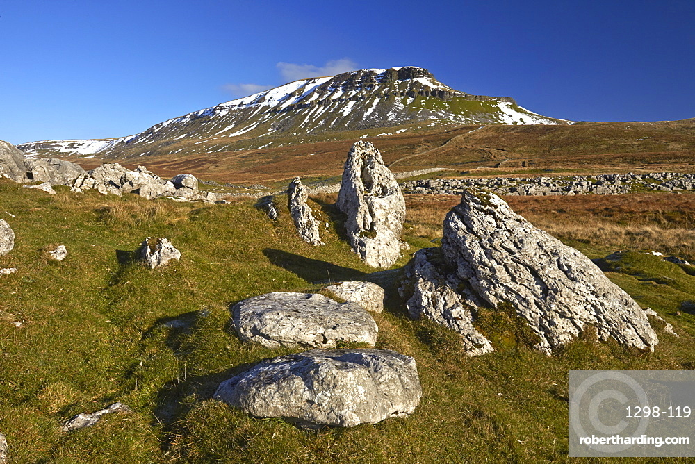 Snow capped Penyghent in the Yorkshire Dales National Park, Ribblesdale, North Yorkshire, England, United Kingdom, Europe