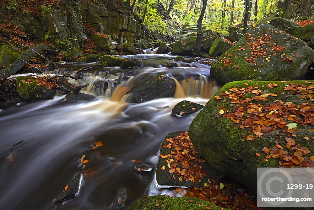 The Burbage Brook flowing through Padley Gorge, Peak District National Park, Derbyshire, England, United Kingdom, Europe