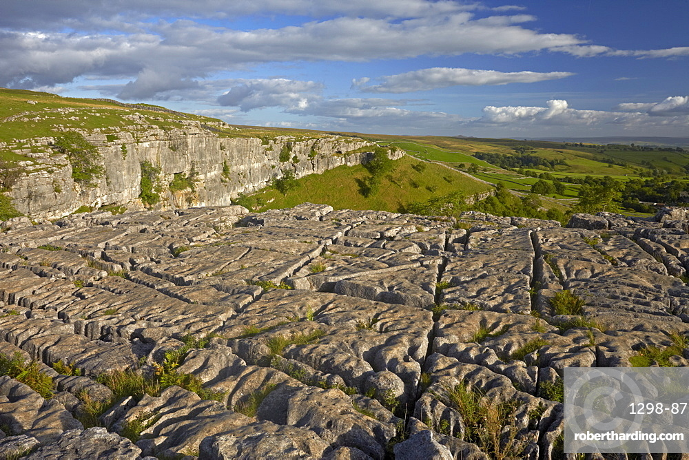 The limestone pavement on the top of Malham Cove, North Yorkshire, England, United Kingdom, Europe