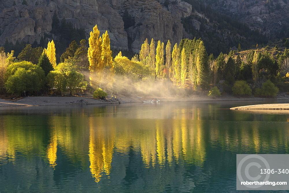 Poplar trees in autumnal colours, San Carlos de Bariloche, Patagonia, Argentina, South America