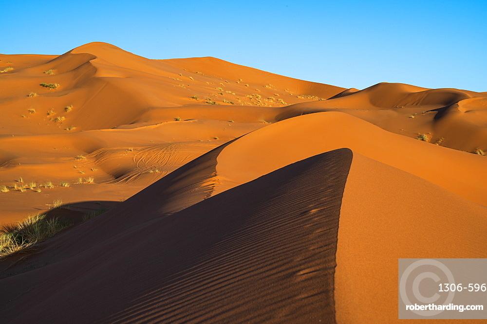 Sand dunes and blue sky, Sahara Desert, Morocco, North Africa, Africa