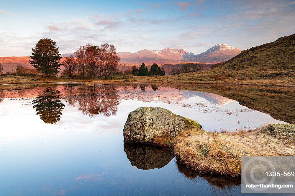 Kelly Hall Tarn and view of Coniston Old Man reflected, Lake District National Park, UNESCO World Heritage Site, Cumbria, England, United Kingdom, Europe