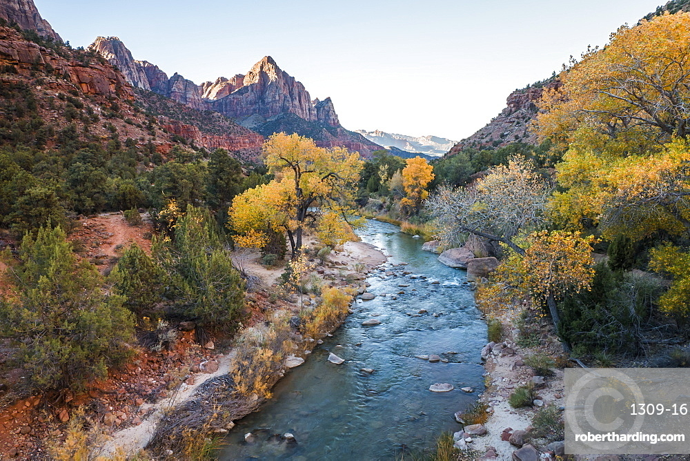 View along the Virgin River to the Watchman, autumn, Canyon Junction, Zion National Park, Utah, United States of America, North America