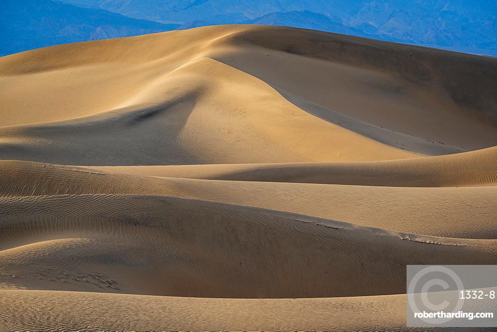 Sand dunes in the Sahara Desert, Merzouga, Morocco, North Africa, Africa