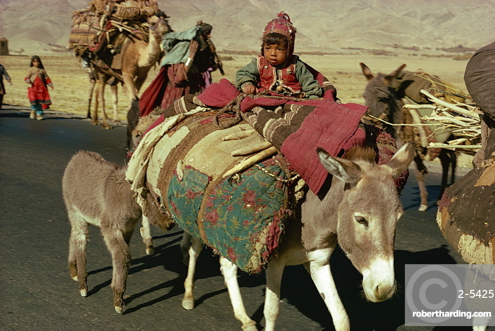 Kuchi nomads, Afghanistan, Asia