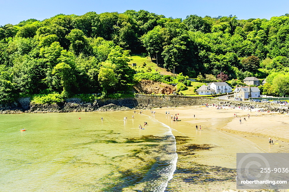 North Beach Bay, Salcombe, Devon, England, United Kingdom, Europe
