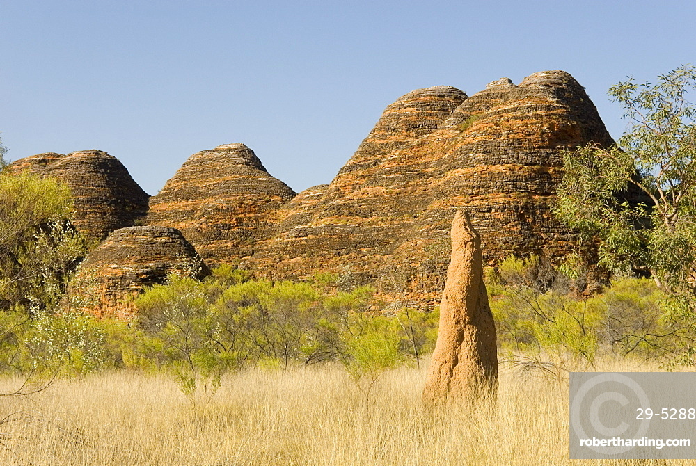 Sandstone hills and termite mounds in The Domes area of Purnululu National Park (Bungle Bungle), UNESCO World Heritage Site, Western Australia, Australia, Pacific