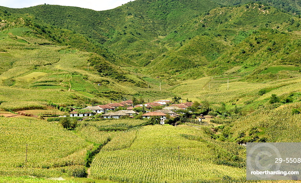 Village amid corn fields near Chongjin, Hamgyong Province, North Korea, Asia