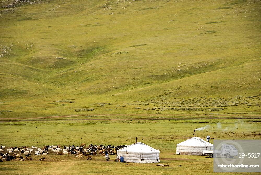 Nomadic herders' ger camp on Steppes grasslands of Mongolia, Asia