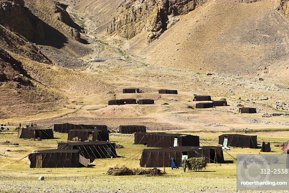 Summer yurts in camp of Aimaq semi-nomads, between Chakhcharan and Jam, Pal-Kotal-i-Guk, Afghanistan, Asia