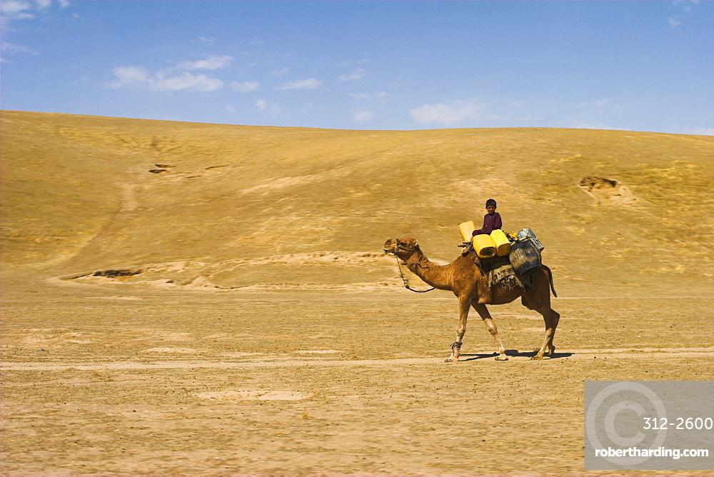 Boy riding camel, between Maimana and Mazar-I-Sharif, Afghanistan, Asia