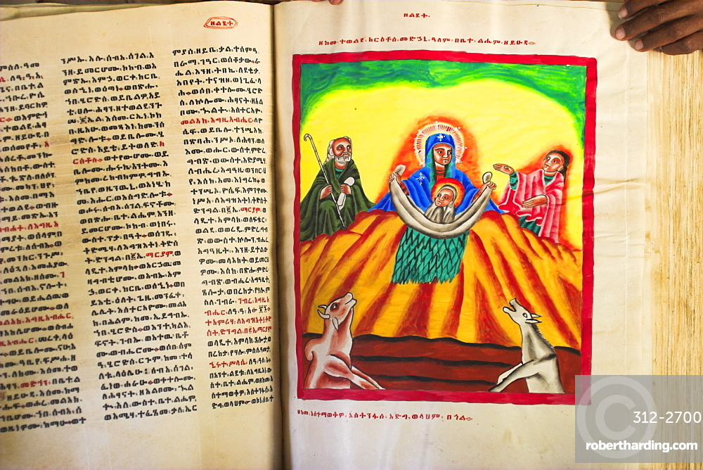 Goatskin manuscript said to be 2000 years old showing the birth of Jesus with animals blowing on him to keep him warm, church of Abuna Aftse, on site of a 6th century church, Yeha, Aksum, Ethiopia, Africa