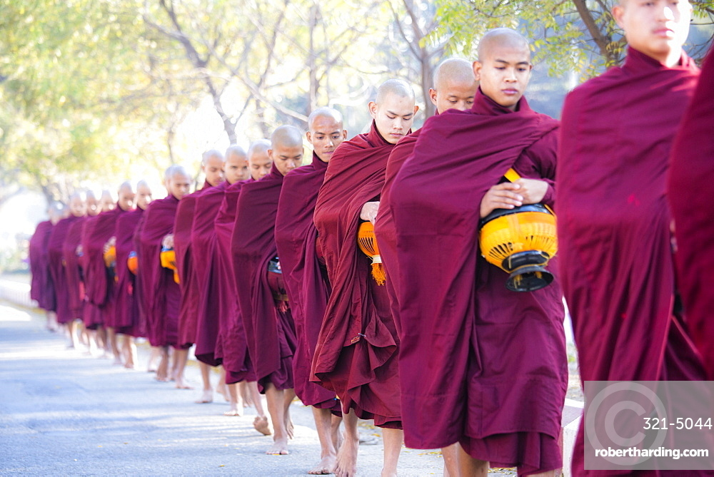 Buddhist monks walking along road to collect alms, near Shwezigon Paya, Nyaung U, Bagan, Myanmar (Burma), Asia