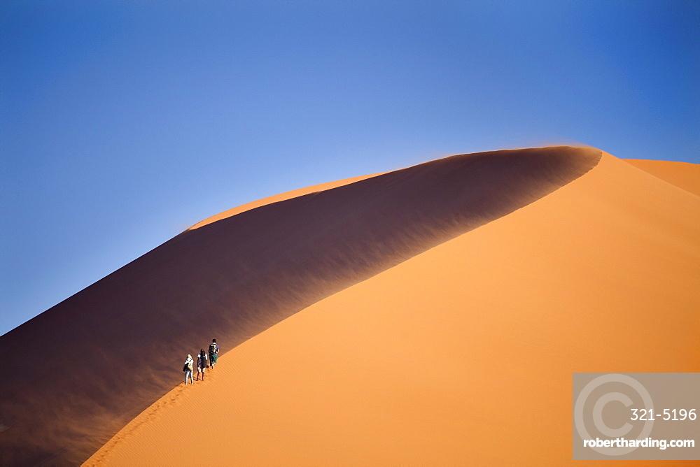 Tourists walking up the snaking ridge of Elim Dune against blue sky, Namib Desert near Sesriem, Namib Naukluft Park, Namibia, Africa