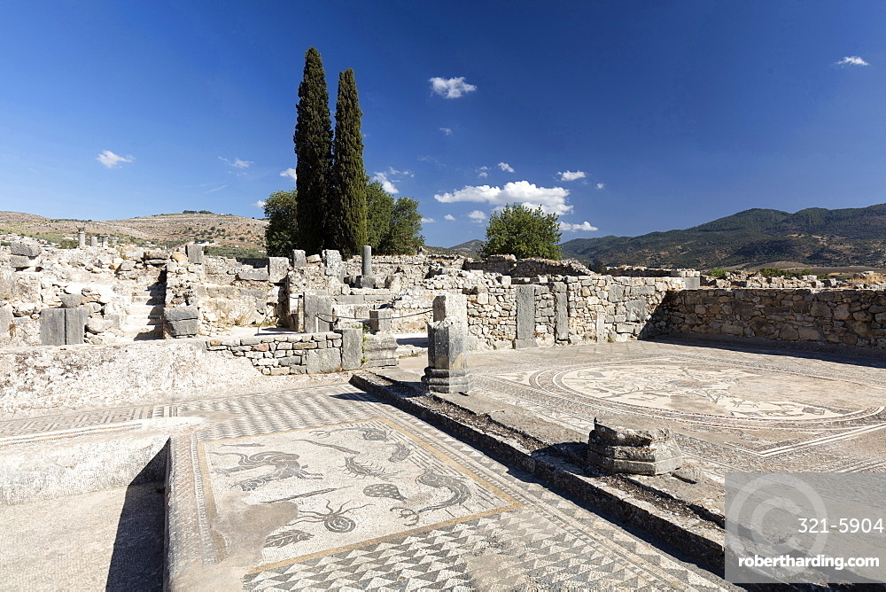 Mosaics in the Roman city of Volubilis, UNESCO World Heritage Site, near Moulay Idris, Meknes, Morocco, North Africa, Africa