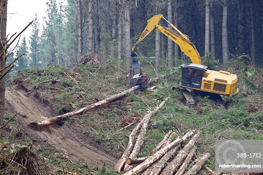 Forestry felling machine,Waikato, North Island, New Zealand, Pacific