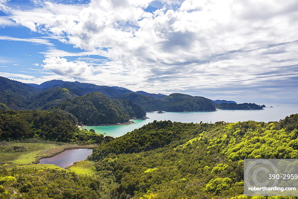 View over Torrent Bay from the Abel Tasman Coast Track, Abel Tasman National Park, near Marahau, Tasman, South Island, New Zealand, Pacific