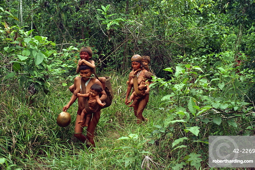 Yanomami Indians on their way to a feast, Brazil, South America