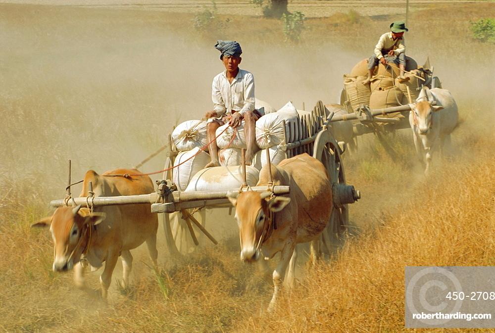 Bullock carts, Myanmar, Asia
