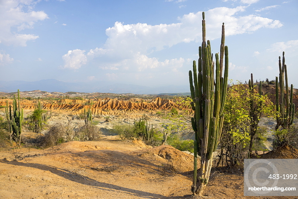 Desierto de Tatocoa (Tatacoa Desert), Colombia, South America