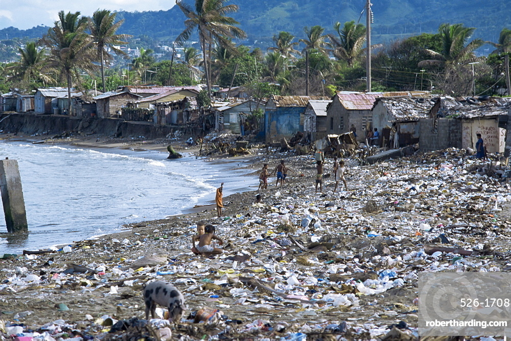 Children and pigs foraging on a rubbish strewn beach, Dominican Republic, West Indies, Caribbean, Central America