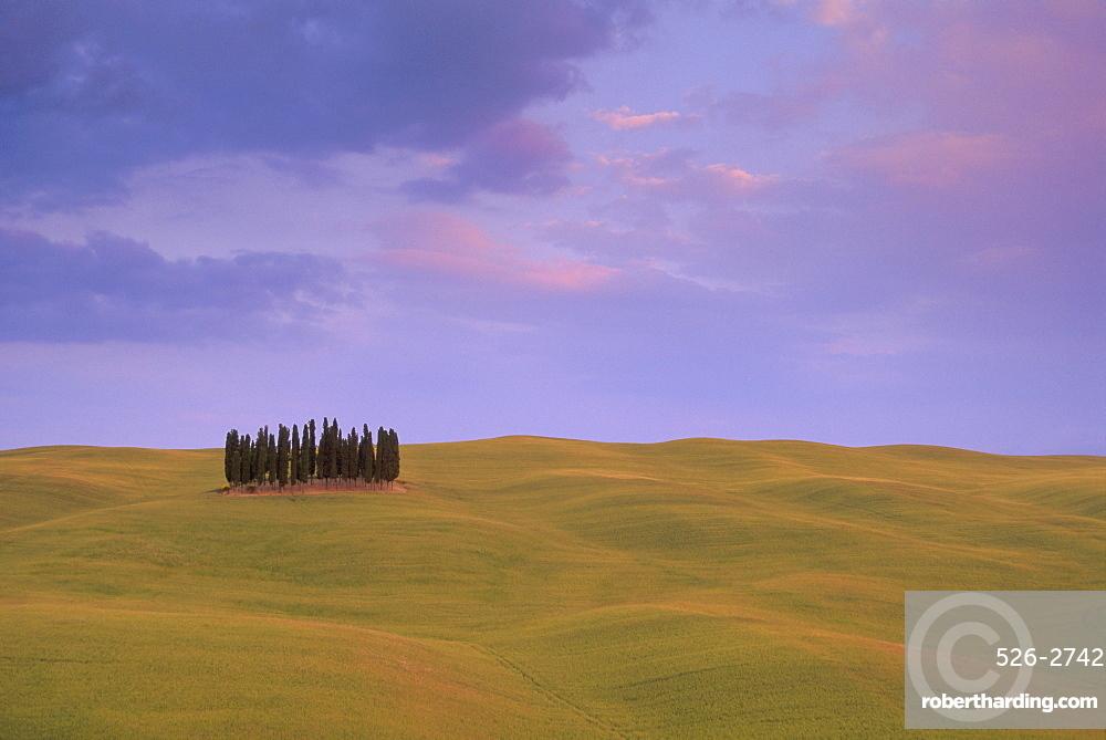 Typical landscape, Tuscany, Italy, Europe