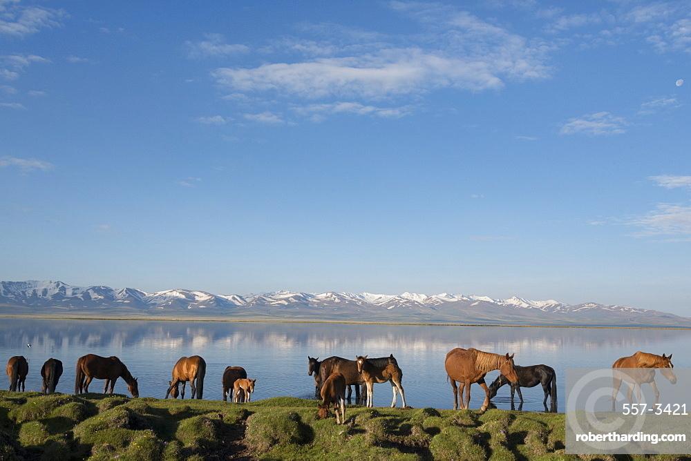 Lake Song-Kol, Kyrgyzstan, Central Asia