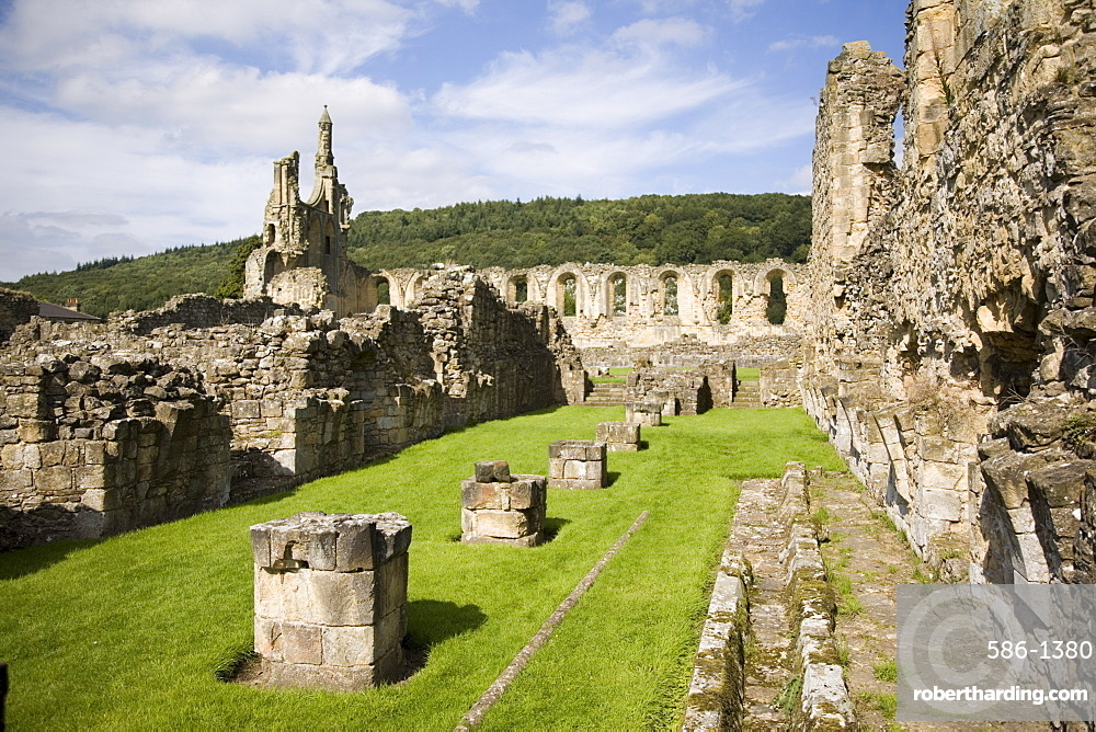 Ruins of the 12th century Cistercian Byland Abbey, destroyed by Scottish army in Battle of Byland 1322, when Edward ll was defeated, Coxwold, North York Moors National Park, Yorkshire, England, United Kingdom, Europe