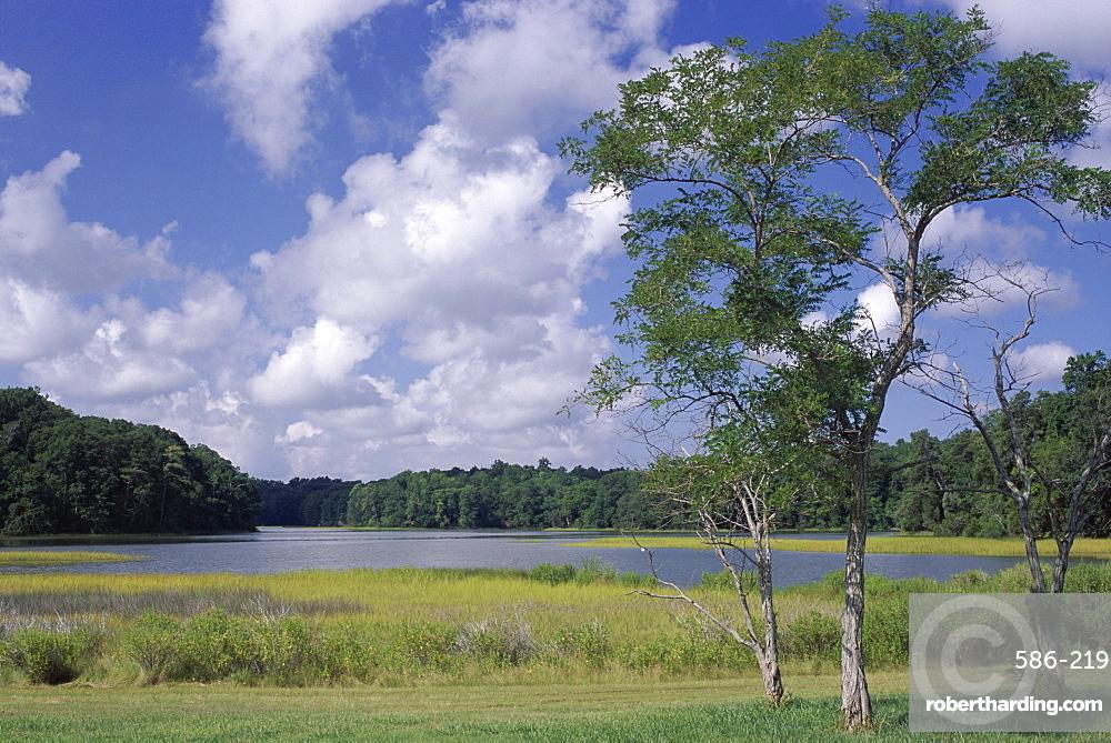 Indian Field Creek, on Colonial Highway, near Williamsburg, Virginia, United States of America (U.S.A.), North America
