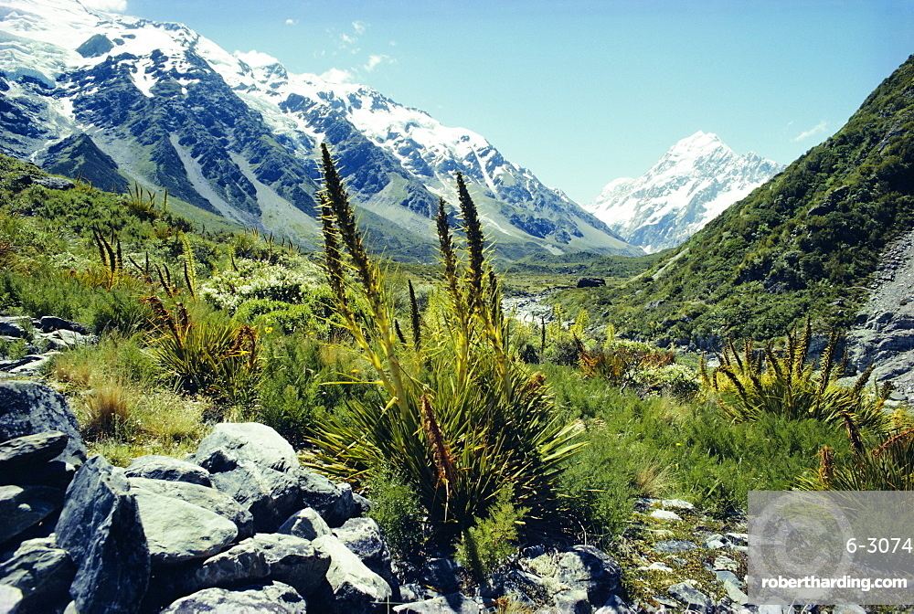 Mount Cook, Westland National Park, South Island, New Zealand, Pacific